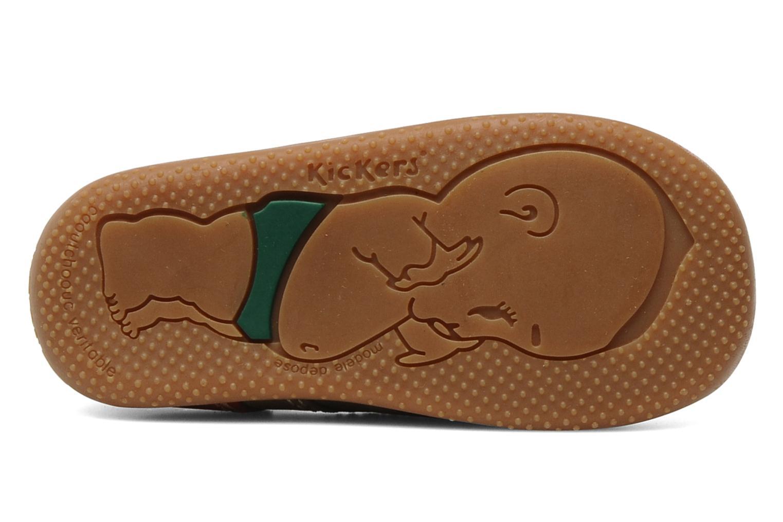Stiefeletten & Boots Kickers Bonbon braun ansicht von oben