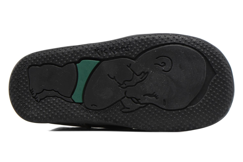 Stiefeletten & Boots Kickers Bonbon schwarz ansicht von oben
