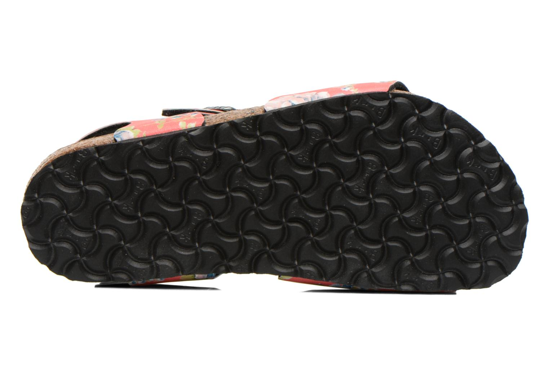 Sandales et nu-pieds Birkenstock Rio Multicolore vue haut