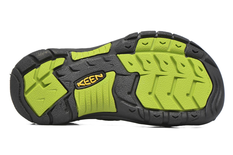 Sandales et nu-pieds Keen Newport H2 Noir vue haut