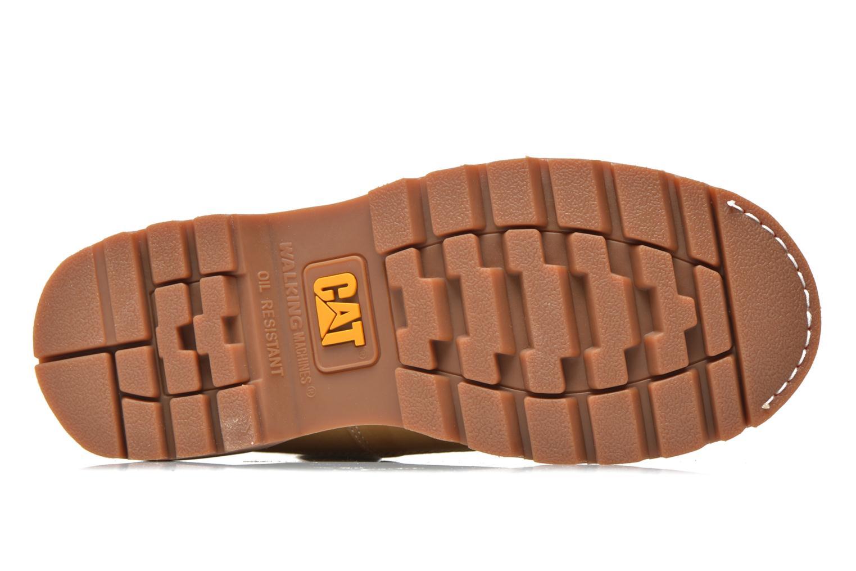 Stiefeletten & Boots Caterpillar Colorado beige ansicht von oben