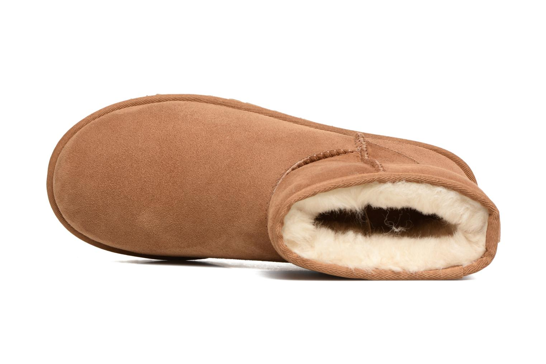 Classic Mini Chestnut