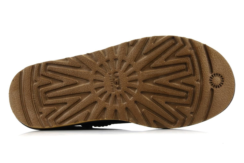 Stiefeletten & Boots UGG Classic Short blau ansicht von oben