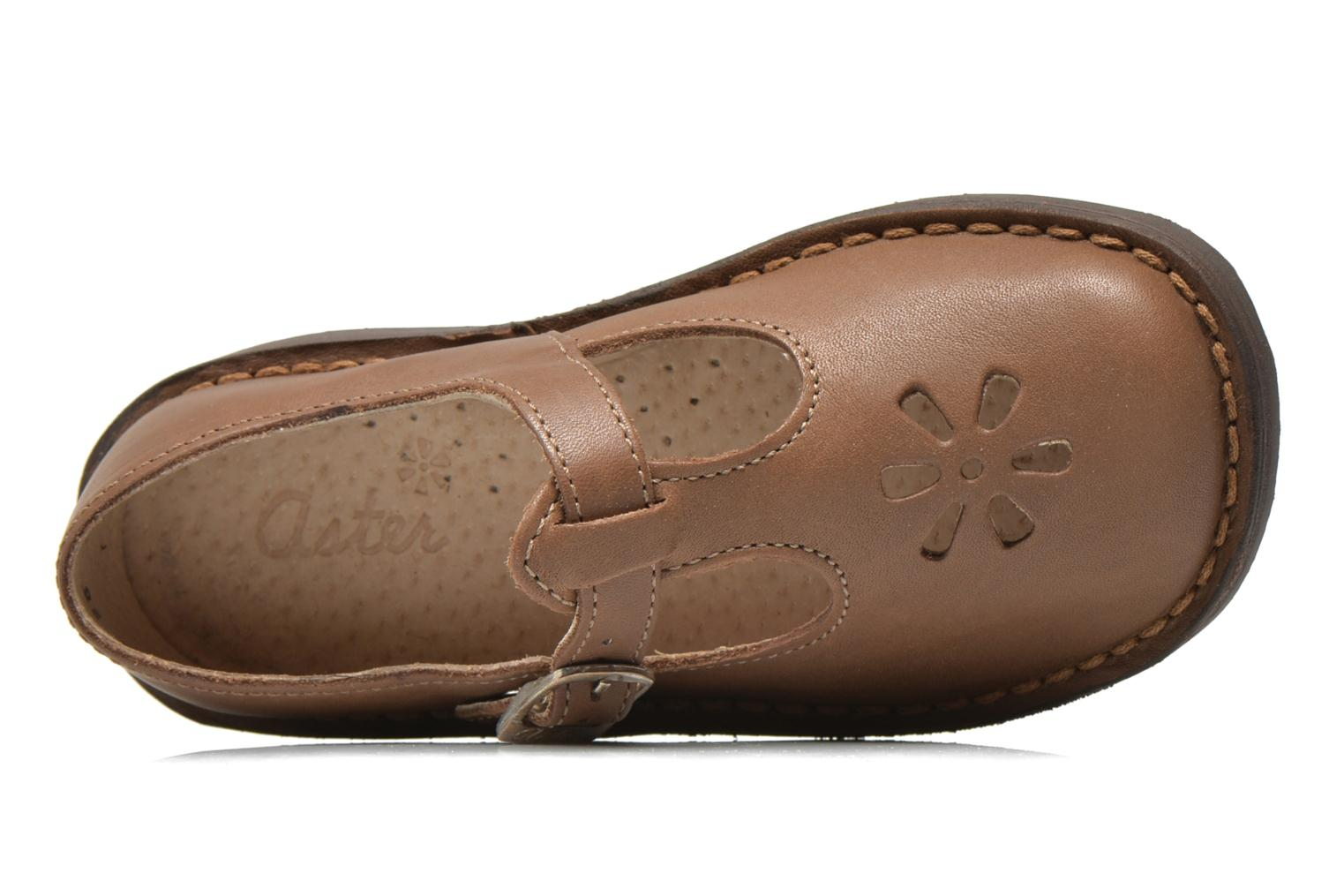 Ballet pumps Aster Dingo Brown view from the left