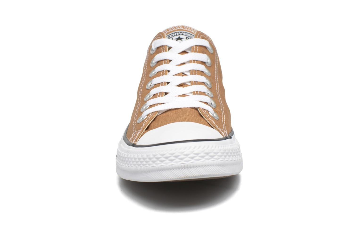 Trainers Converse Chuck Taylor All Star Ox M Brown model view