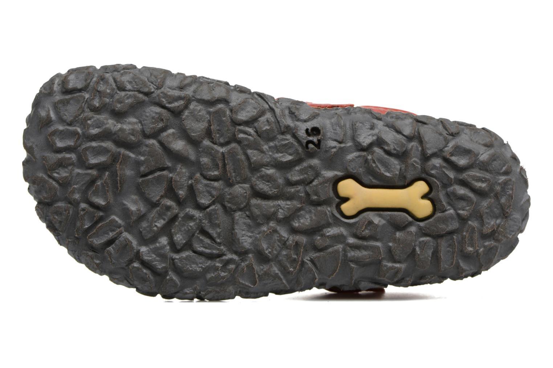 Sandales et nu-pieds Stones and Bones Raxi Multicolore vue haut