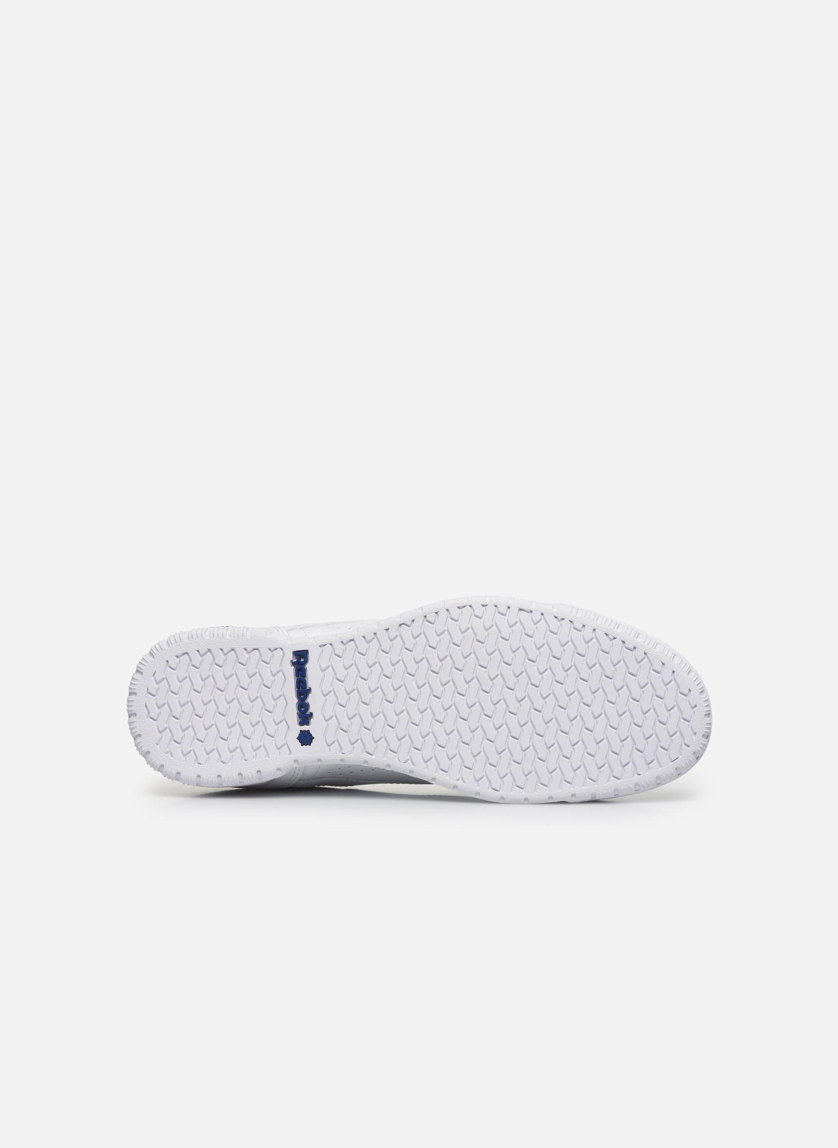 Sneakers Reebok Exofit Lo Clean Logo Int Wit boven
