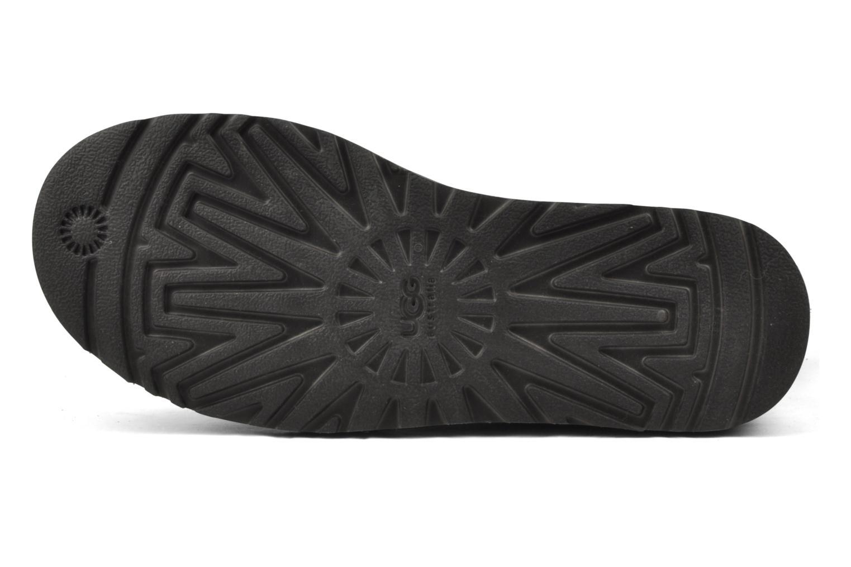 Stiefeletten & Boots UGG Bailey Button grau ansicht von oben