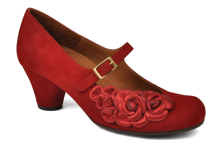 Nerine Ante Rojo