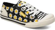 Daisy field Black