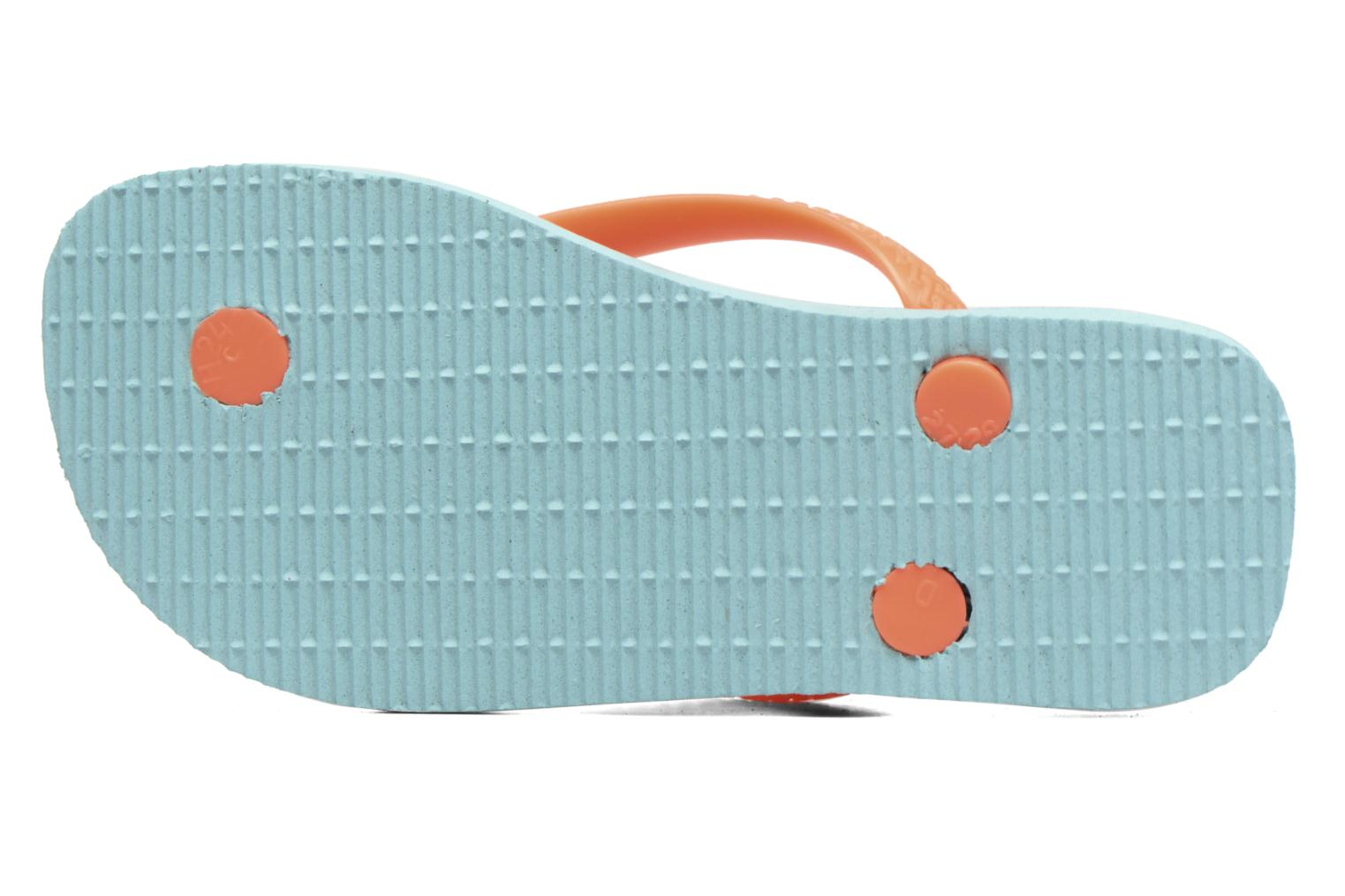 Flip flops Havaianas Kids Fun Blue view from above