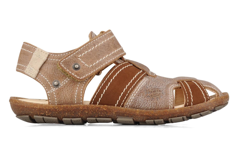 Sandali e scarpe aperte Primigi Torquato Marrone immagine posteriore