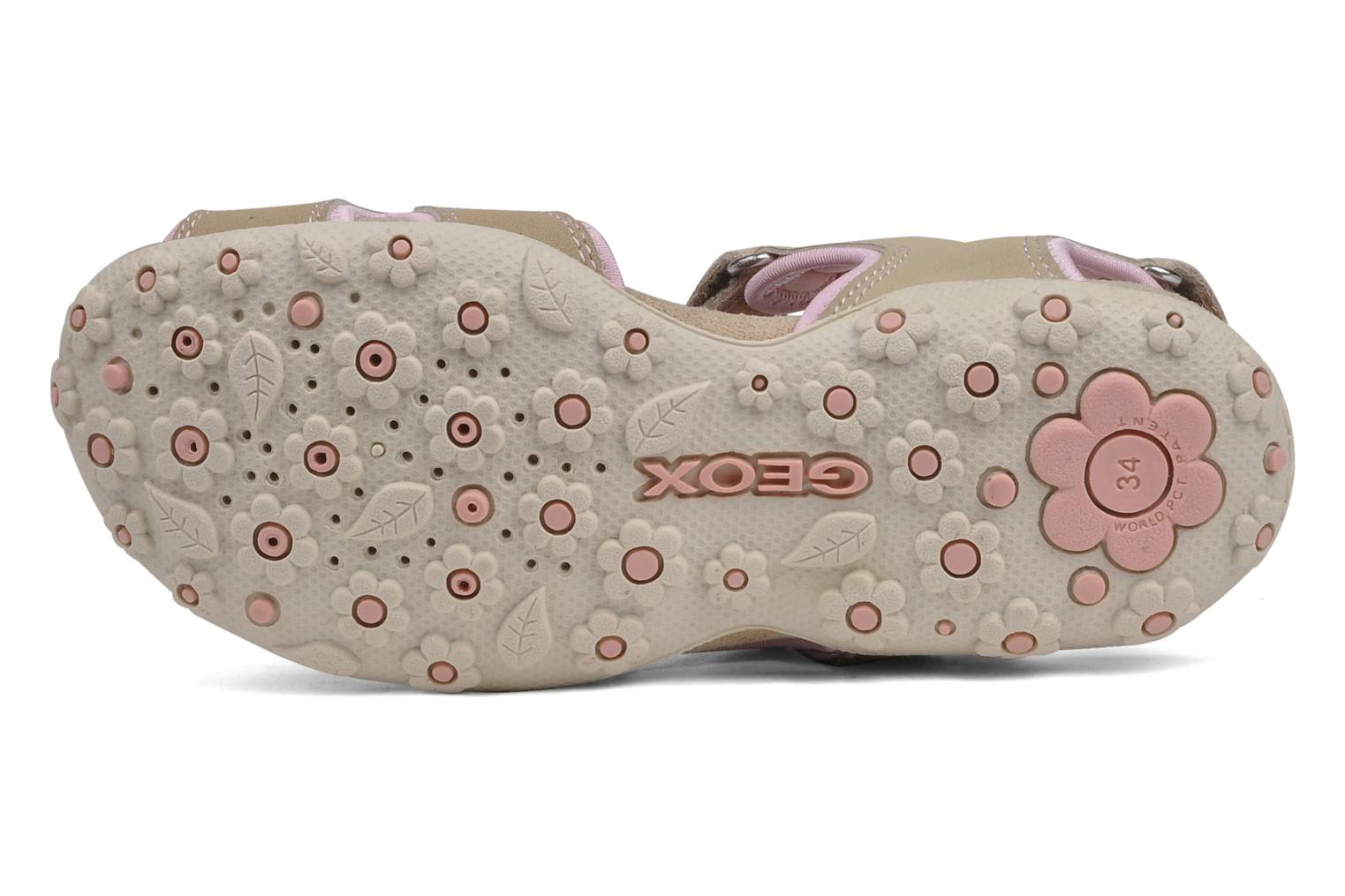 Sport shoes Geox J s.roxanne r Beige view from above