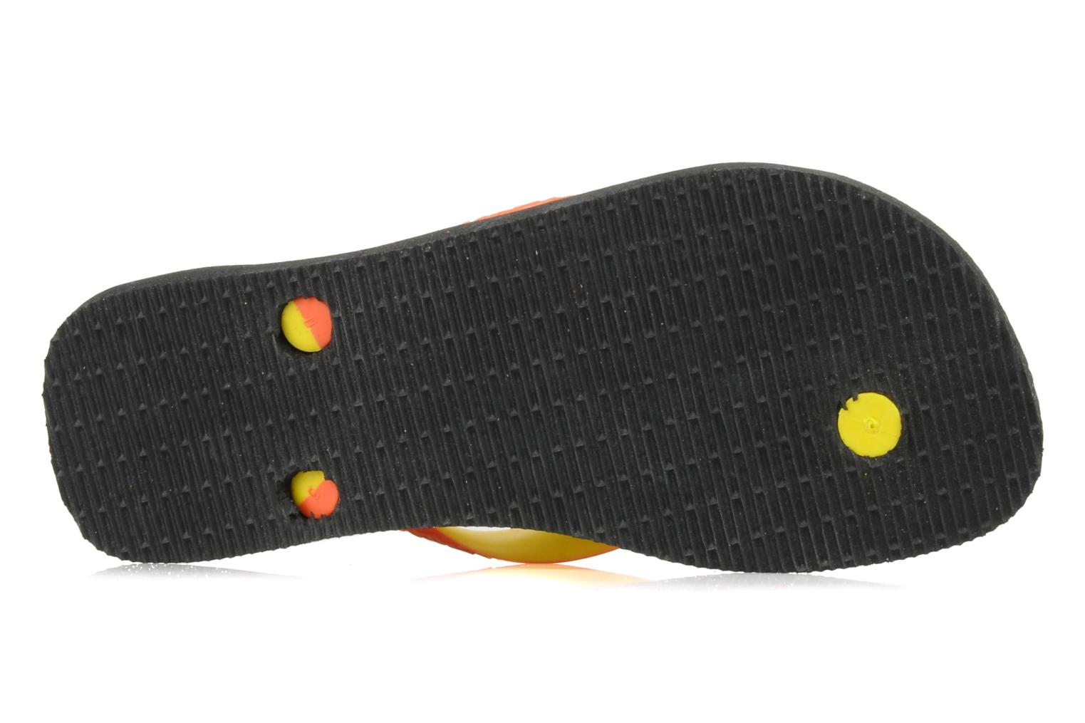 Flip flops Havaianas Top mix f Black view from above