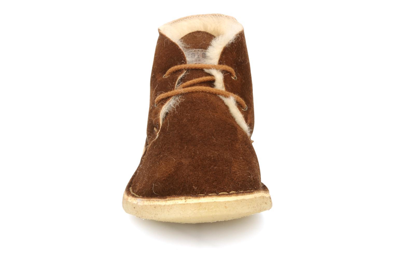Chaussures à lacets U.S Polo Assn. Aileen Marron vue portées chaussures