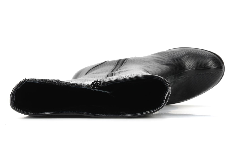 Valmor Noir boli negro et anis negro