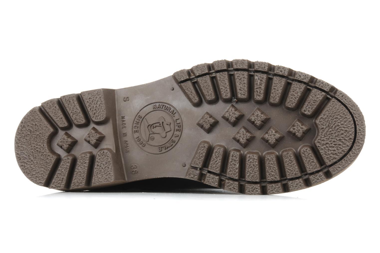 Stiefeletten & Boots Panama Jack Basica 30 braun ansicht von oben
