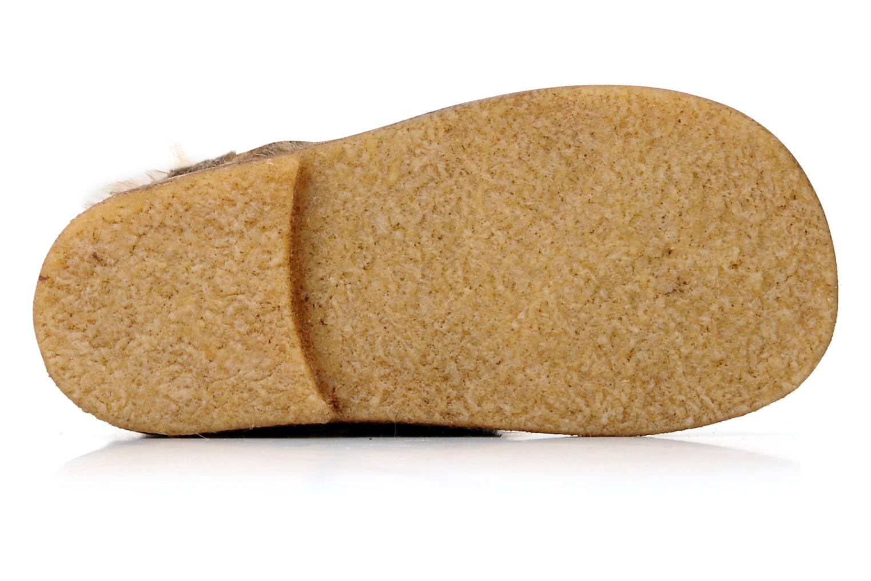 Stiefeletten & Boots PèPè Diadème braun ansicht von oben