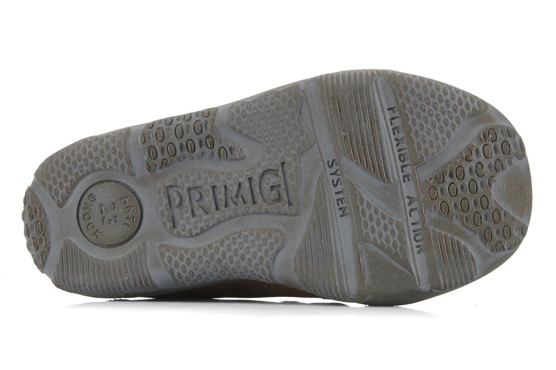 Chaussures à scratch Primigi Leroy Marron vue haut