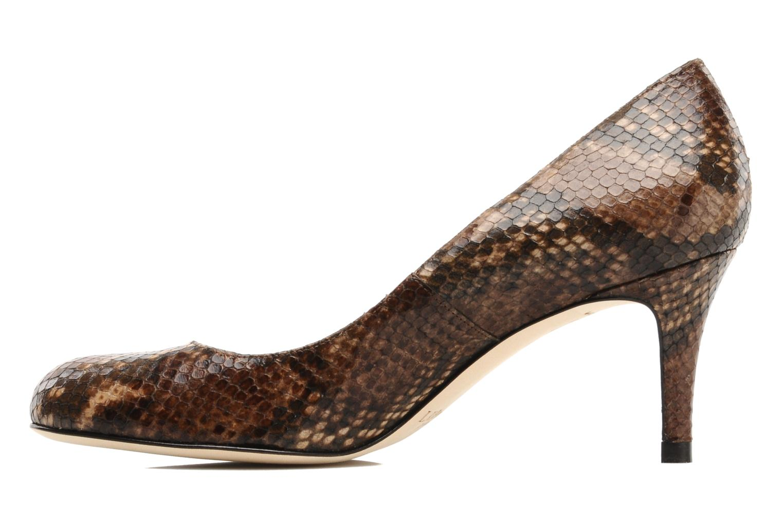 Sabira Brown snake