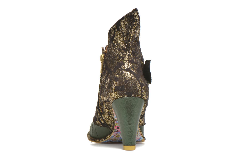 Bottines et boots Irregular Choice Miaow Vert vue droite