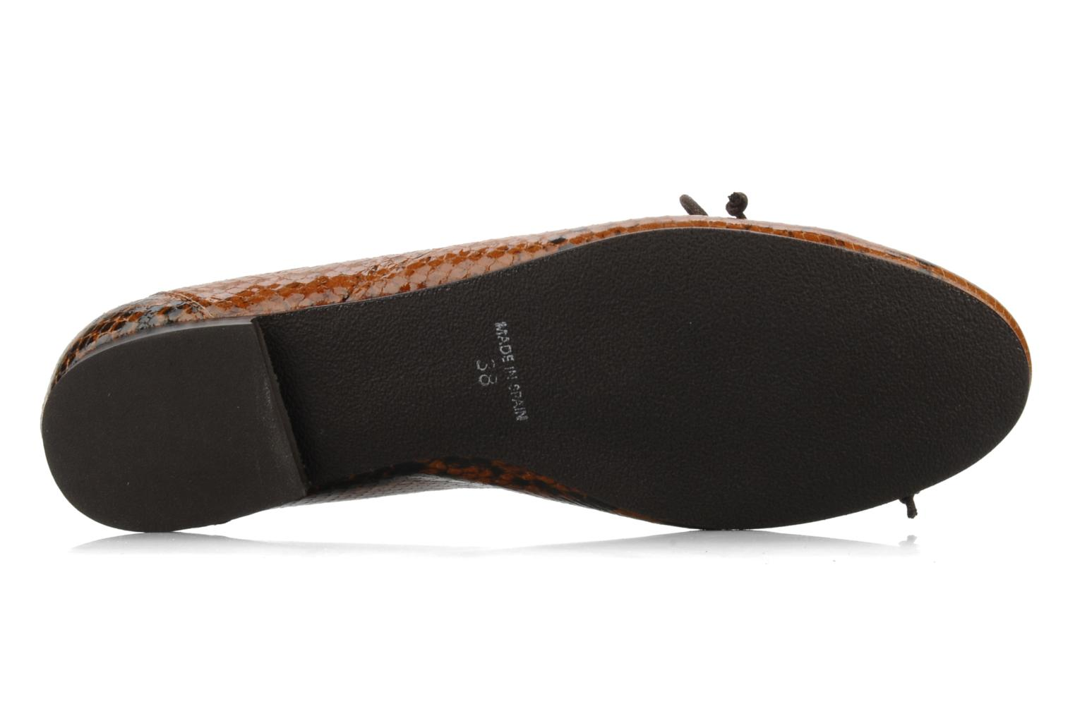 Ballet pumps Eden Kawi Brown view from above