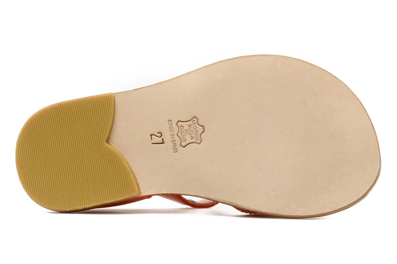 Sandales et nu-pieds start rite classics MEG Orange vue haut