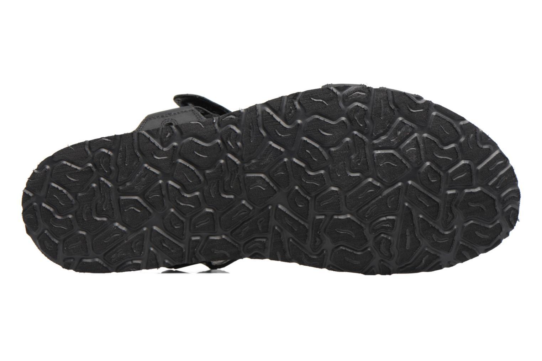 Sandales et nu-pieds Panama Jack Frodo Noir vue haut