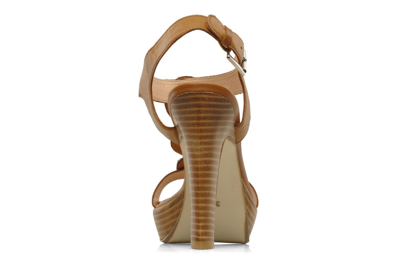 Labeille Camel