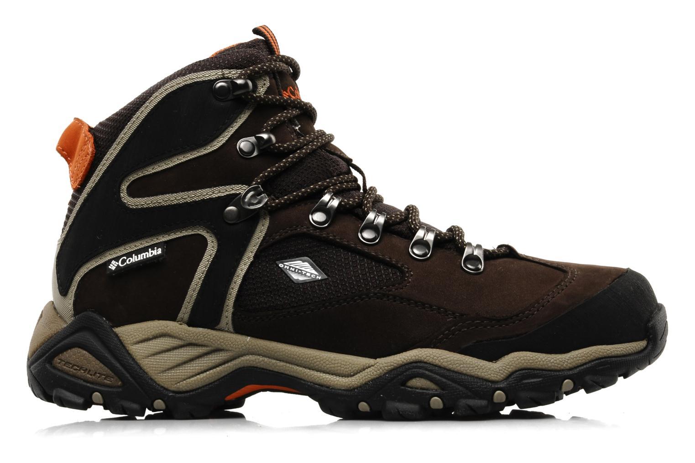 Chaussures de sport Columbia Pole creek omni-tech Marron vue derrière