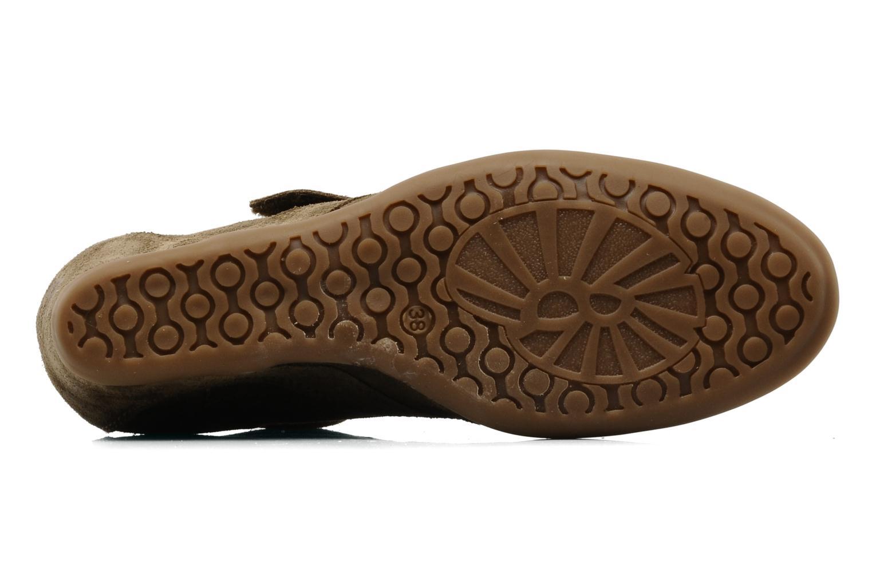 Stiefeletten & Boots Addict-Initial Alida braun ansicht von oben