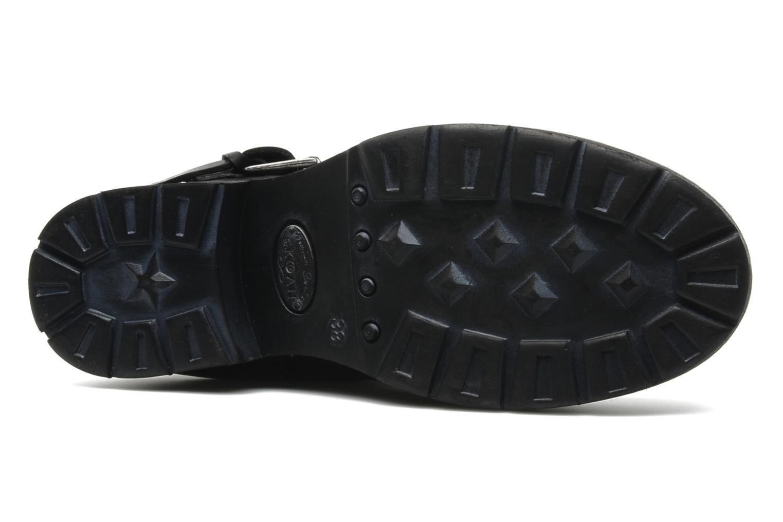 Stiefeletten & Boots Koah Noise schwarz ansicht von oben