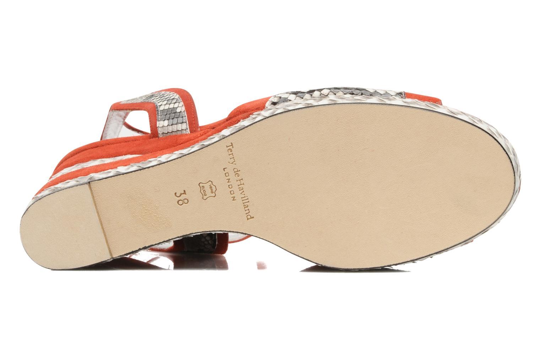 Sandali e scarpe aperte Terry de Havilland SIMA 4 TIER Rosso immagine dall'alto