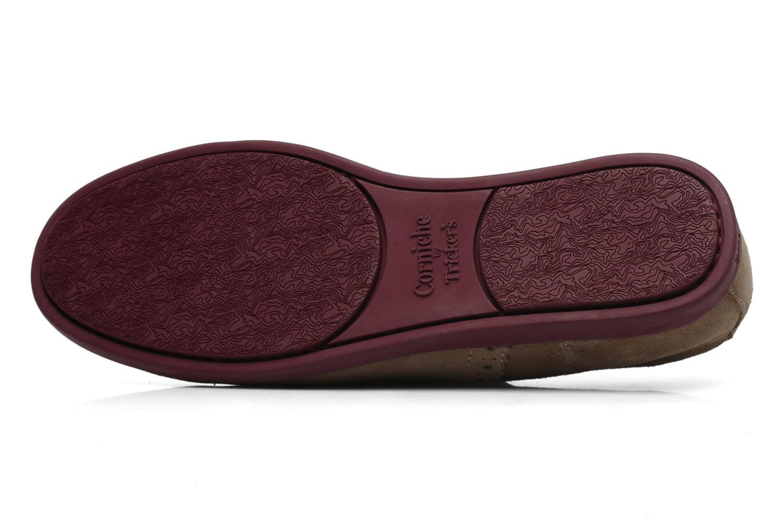Larry CM1000 Beige suede/Berry sole/Berry laces