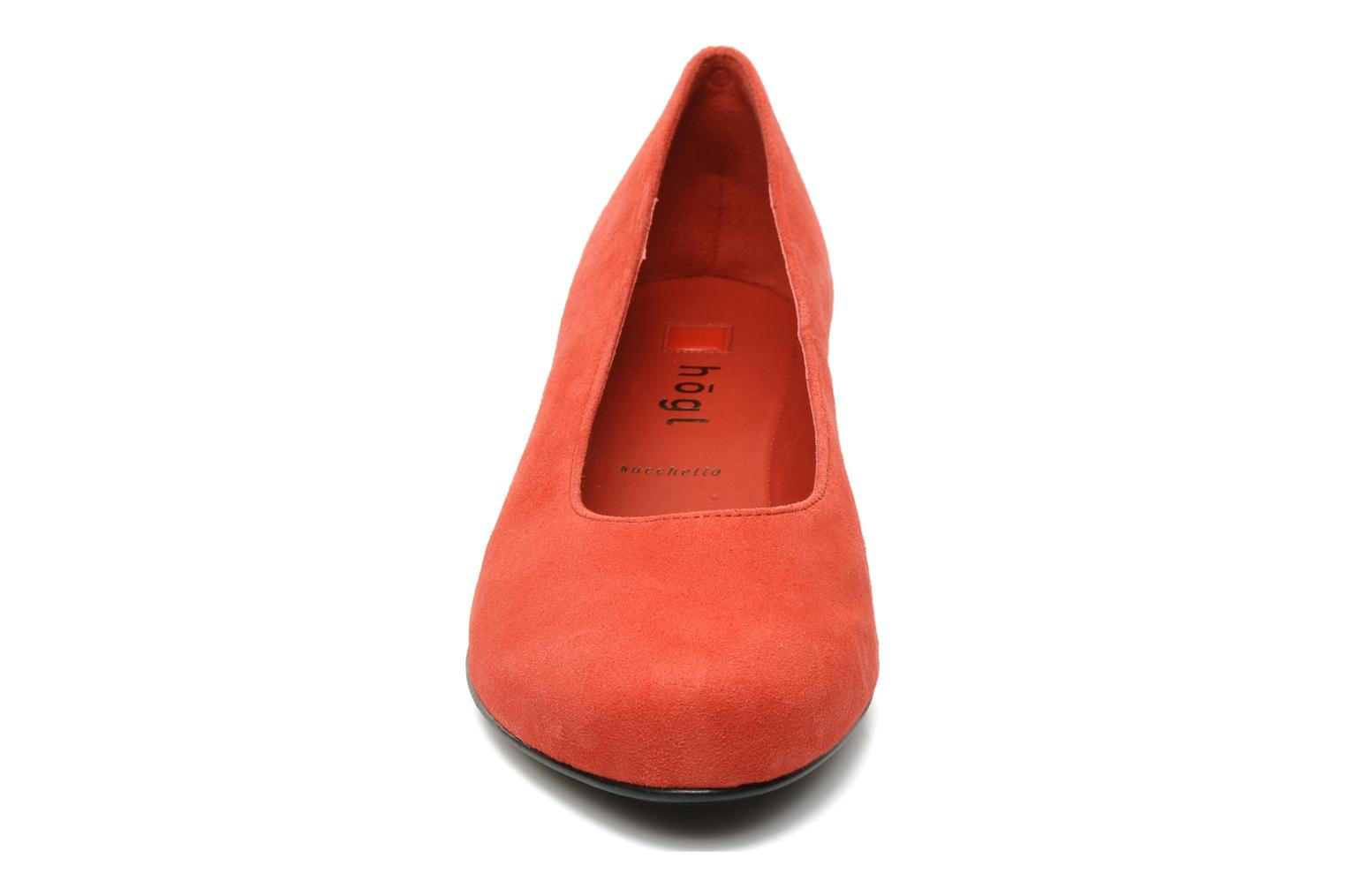 Compina 4000 red