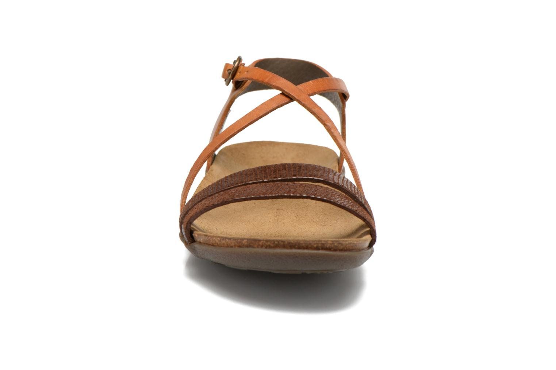 Sandales et nu-pieds Kickers Atomium Marron vue portées chaussures