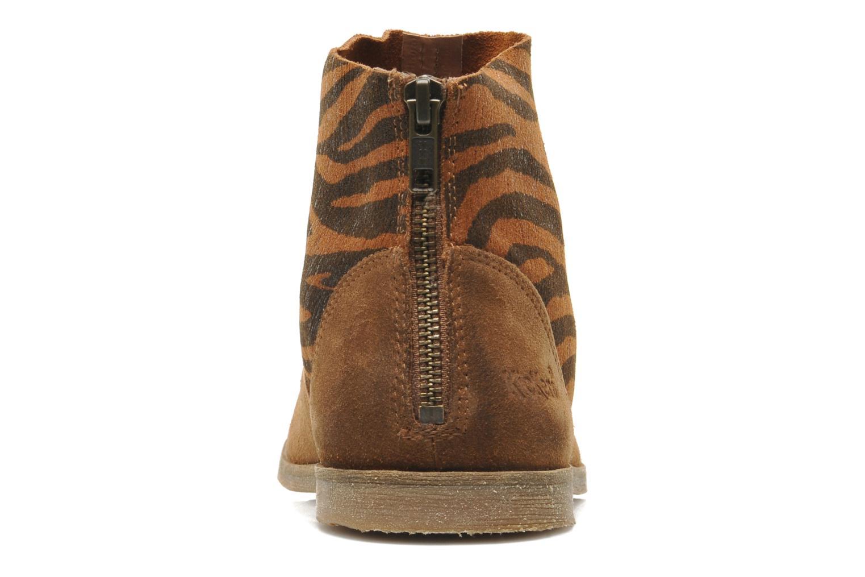 Bottines et boots Kickers ROXANNA Multicolore vue droite