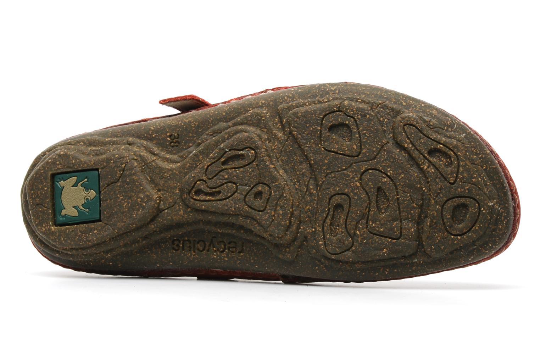 Torcal n°301 Tibet