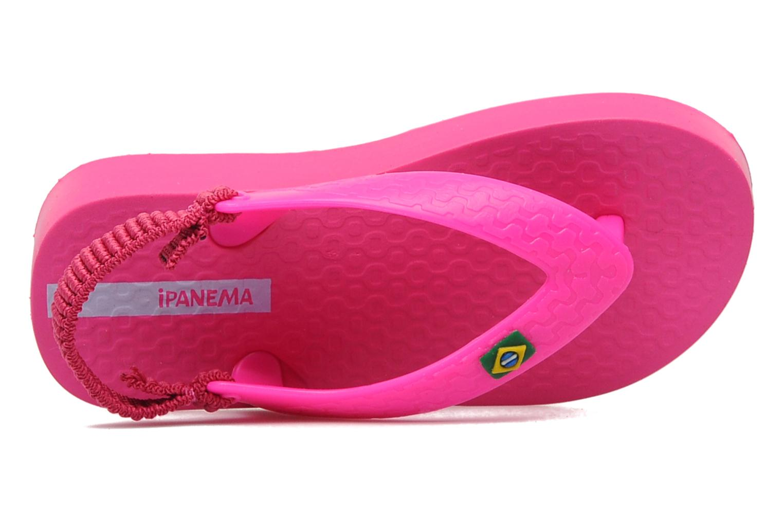 Classic Brasil Baby Rose