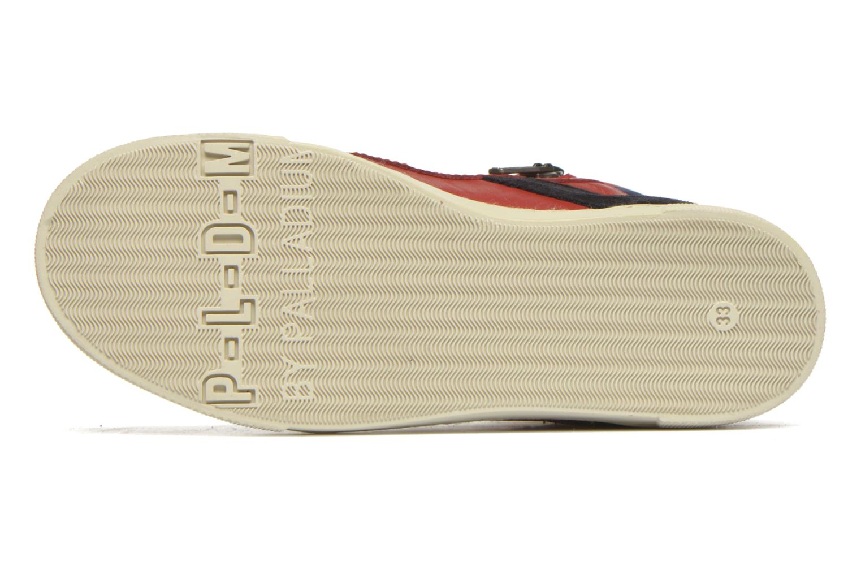 Sneakers P-L-D-M By Palladium Veleda TFL Rood boven