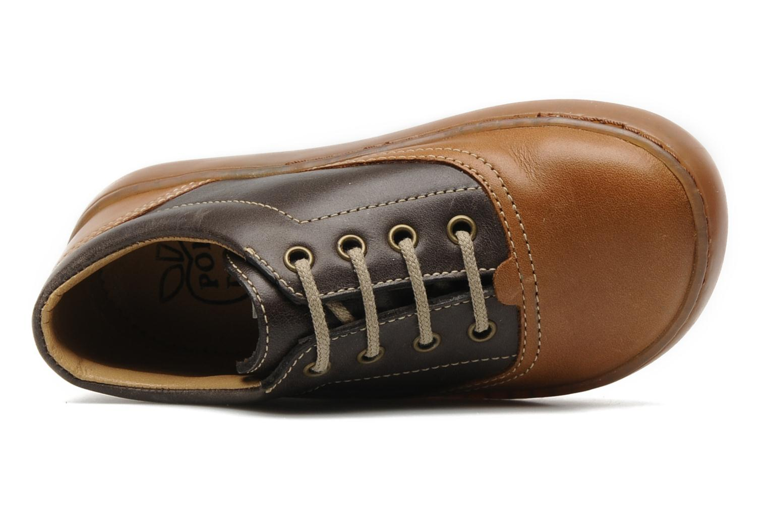 Lace-up shoes Pom d Api Walk CVO Brown view from the left