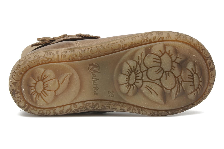 Stiefeletten & Boots Naturino Fleurette beige ansicht von oben