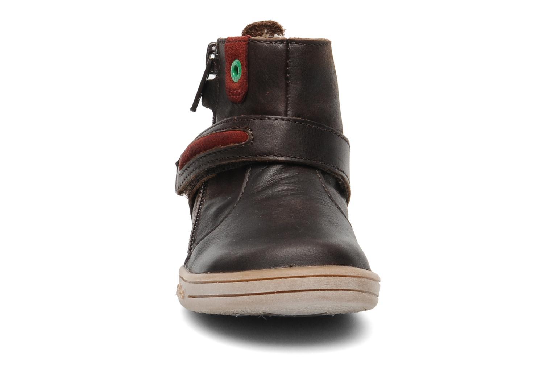 Stiefeletten & Boots Kickers TAB braun schuhe getragen