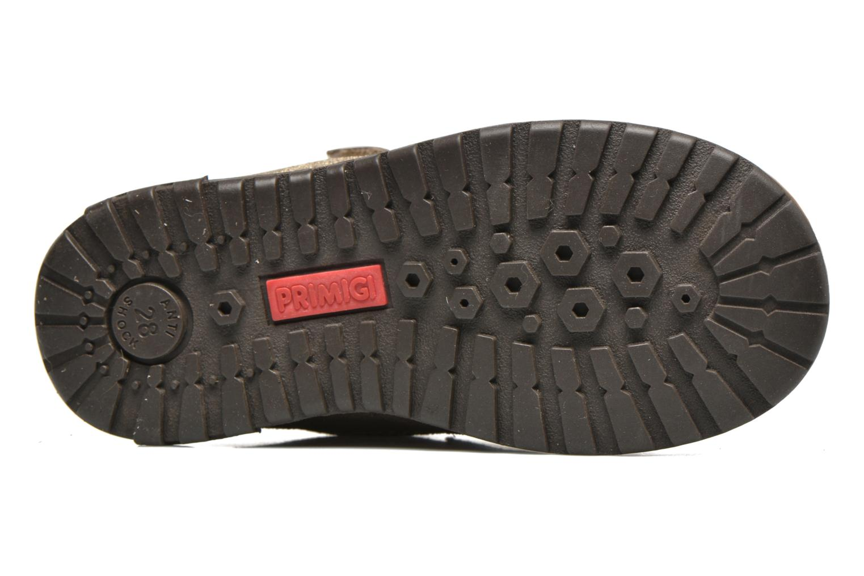 Stiefeletten & Boots Primigi ASPY 1 gold/bronze ansicht von oben