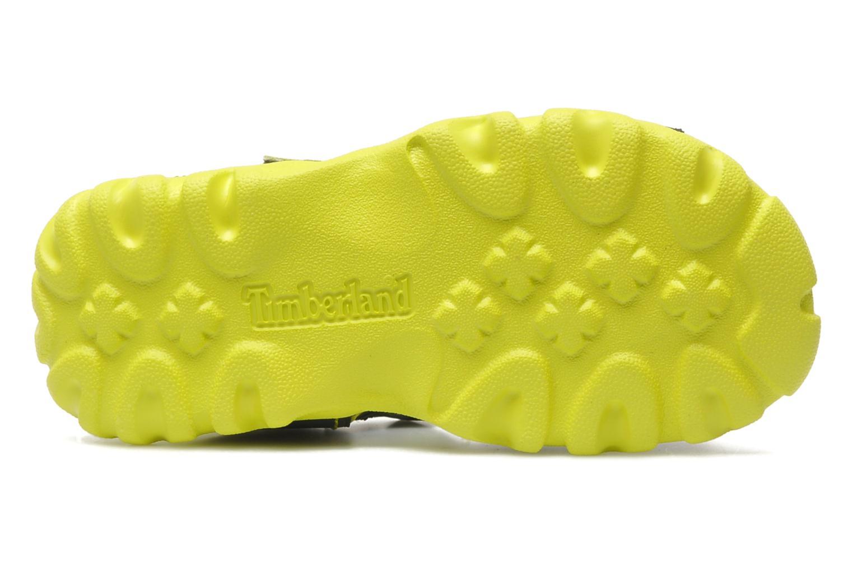 Sandales et nu-pieds Timberland Splashtown 2 Strap Sandal Gris vue haut