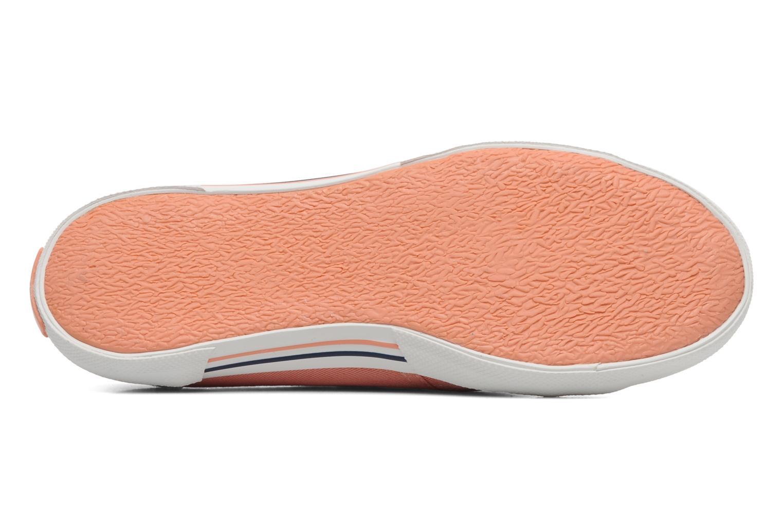 Sneakers Pepe jeans Aberlady Oranje boven