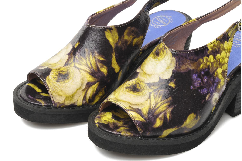JC 2013-553 Purple/Yellow Flowers