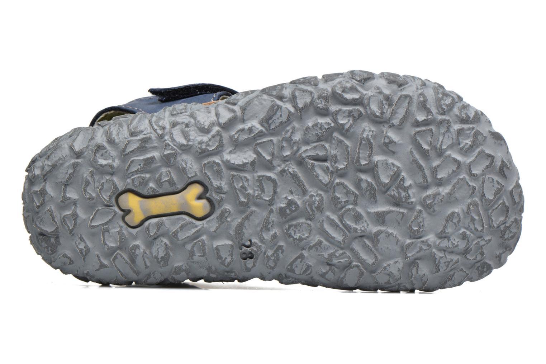 Sandali e scarpe aperte Stones and Bones NATAN Azzurro immagine dall'alto