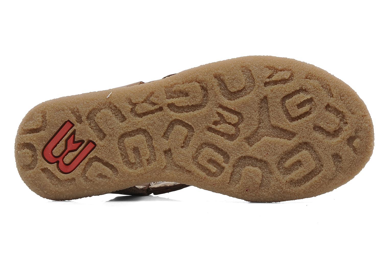 Sandalen Buggy Bagou Bruin boven