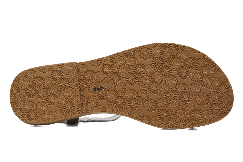 Sandales et nu-pieds Acebo's Mimosa Gris vue haut
